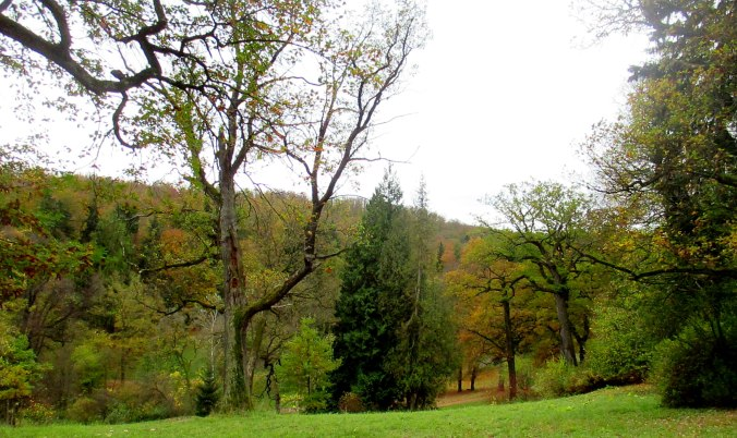 Belvedere im Herbst (15)