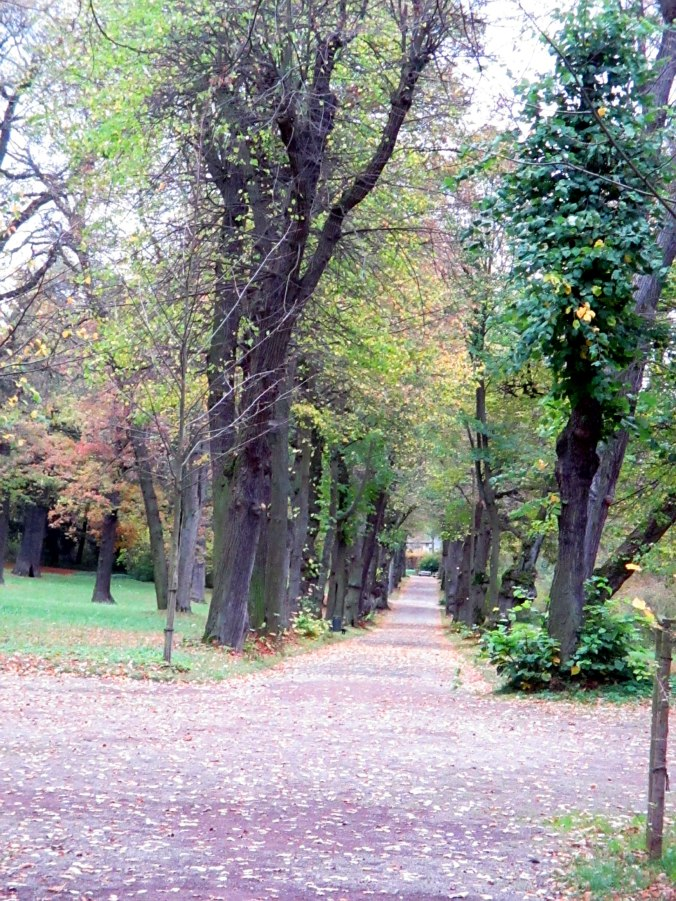 Belvedere im Herbst (29)