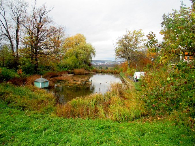 Belvedere im Herbst (3)