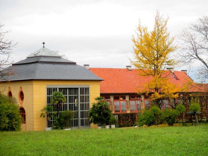 Belvedere im Herbst (8)