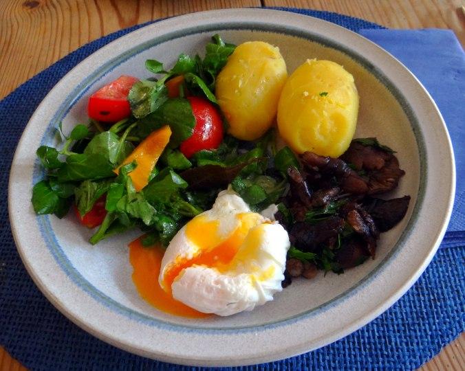 Hallimasch,Brunnenkresse,pochiertes Ei ,vegetarisch(1)
