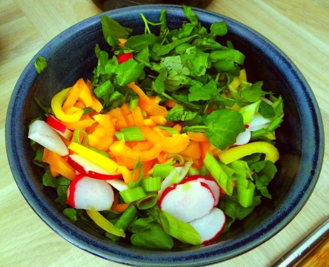 Hallimasch,Brunnenkresse,pochiertes Ei ,vegetarisch(12)
