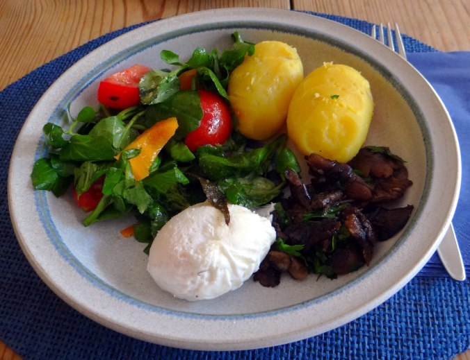 Hallimasch,Brunnenkresse,pochiertes Ei ,vegetarisch(15)