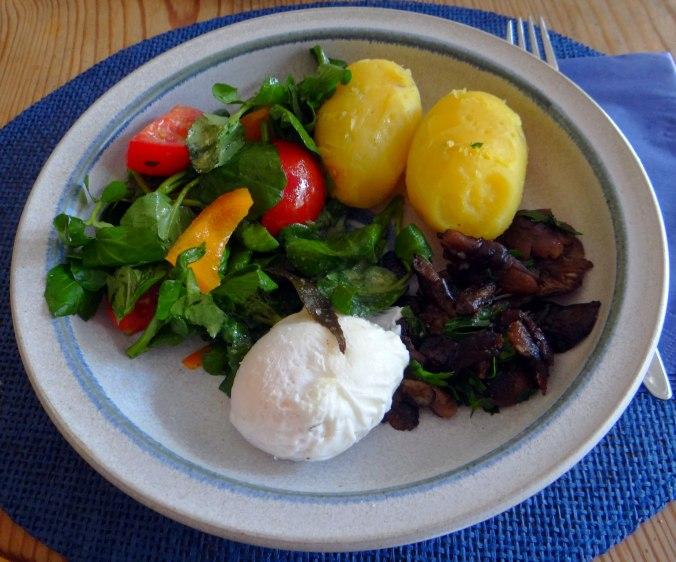 Hallimasch,Brunnenkresse,pochiertes Ei ,vegetarisch(16)