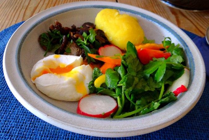 Hallimasch,Brunnenkresse,pochiertes Ei ,vegetarisch(17)
