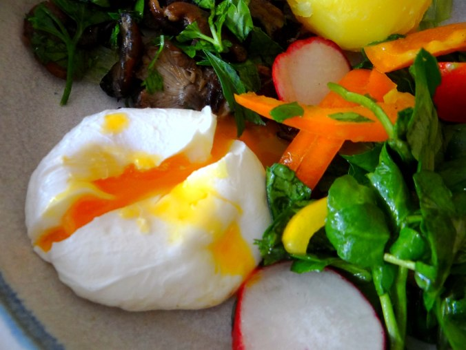 Hallimasch,Brunnenkresse,pochiertes Ei ,vegetarisch(3)