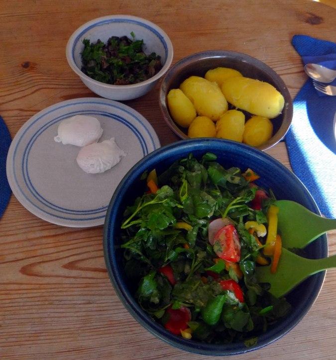Hallimasch,Brunnenkresse,pochiertes Ei ,vegetarisch(4)