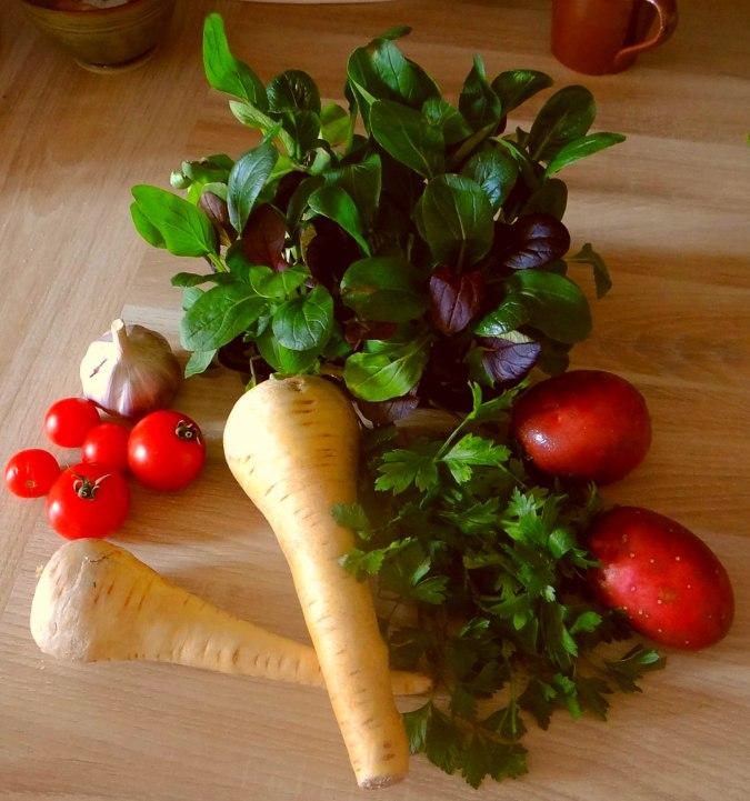 Pastinakensuppe,asiatischer Spinat,Ricotta Nocken (5)