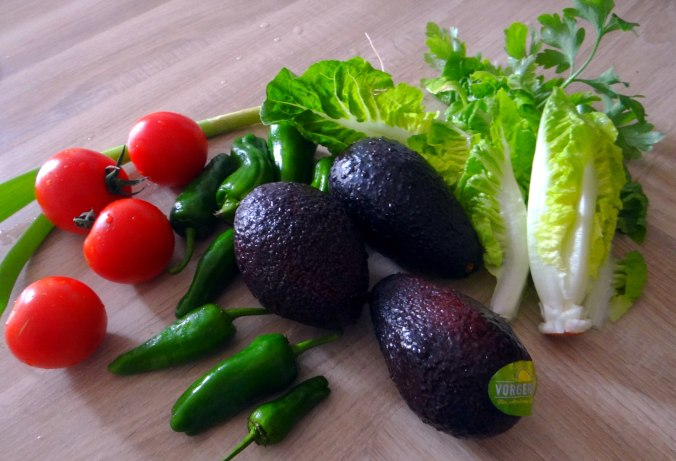 Reis,Guacamole,Pimientos,Salate,vegan (5)