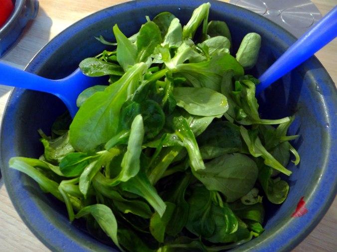 Rotbarsch,Salate,gebackene Quitten (10)