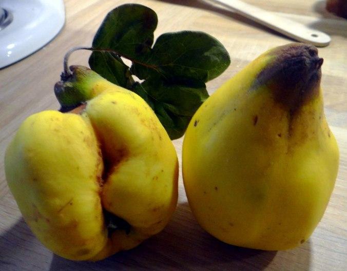Rotbarsch,Salate,gebackene Quitten (19)