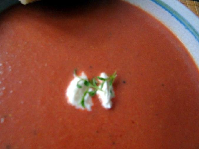 Schwarze Karottensuppe und Focaccia (16)