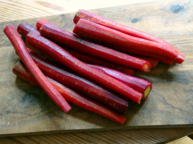 Schwarze Karottensuppe und Focaccia (5)