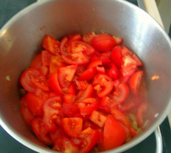 Tomatensuppe,vegan (9)