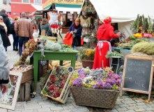 Zwiebelmarkt 2017 (68)