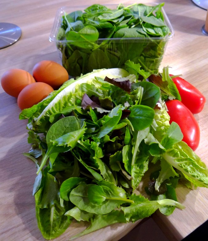 Eierpfannkuchen mit Spinat,Pflücksalat (5)