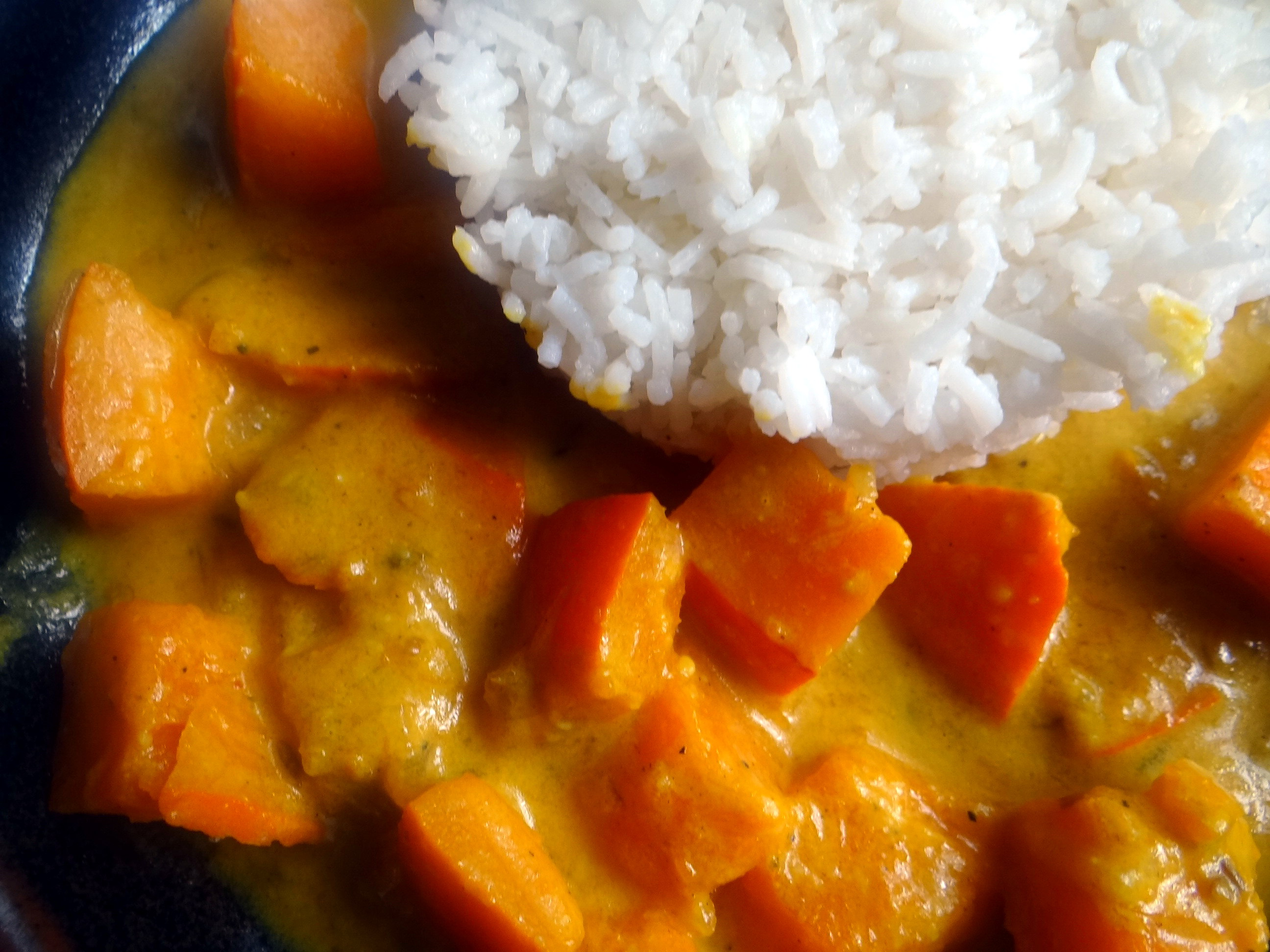 Kürbis Curry,RiiJiiBasmati Reis (3)