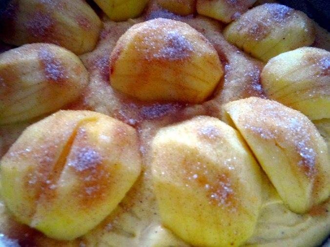 Apfelkuchen (6)