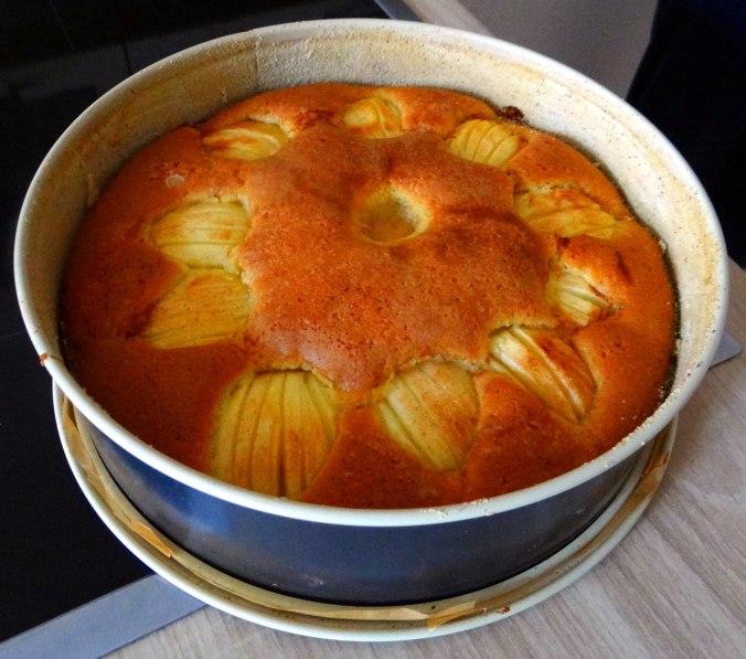 Apfelkuchen (7)