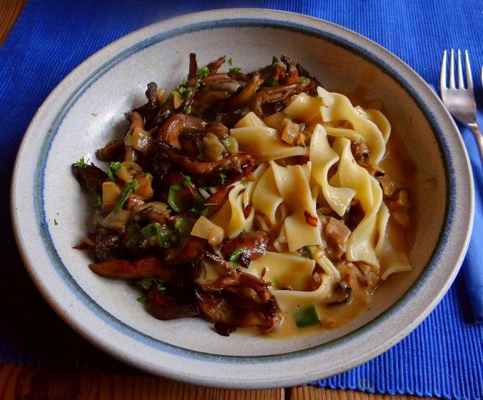 Austernpilze,Nudeln,Sauce (12)