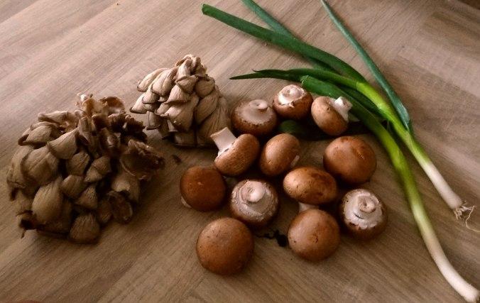 Austernpilze,Nudeln,Sauce (5)