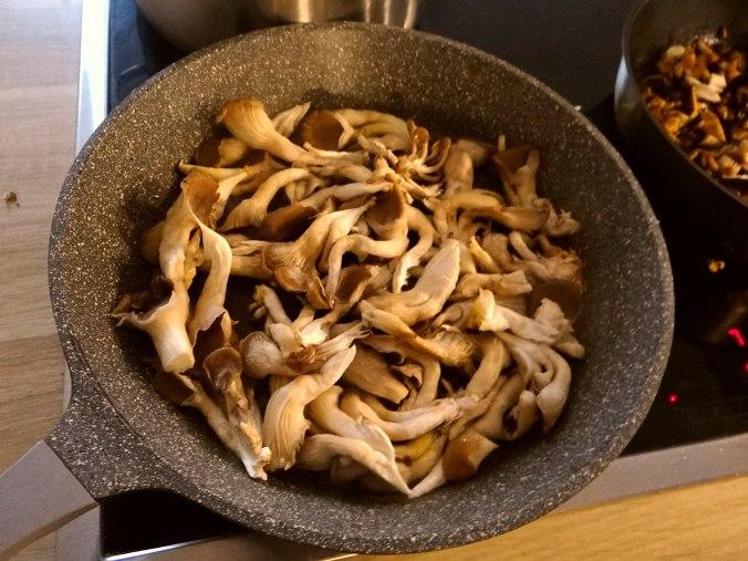 Austernpilze,Nudeln,Sauce (6)