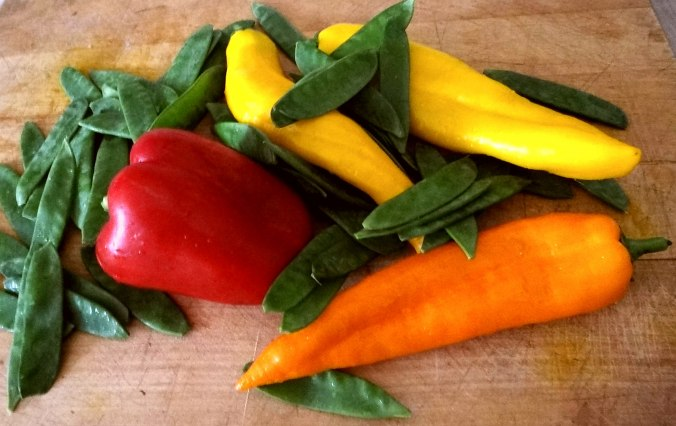 Gedämpfter Paprika (7)
