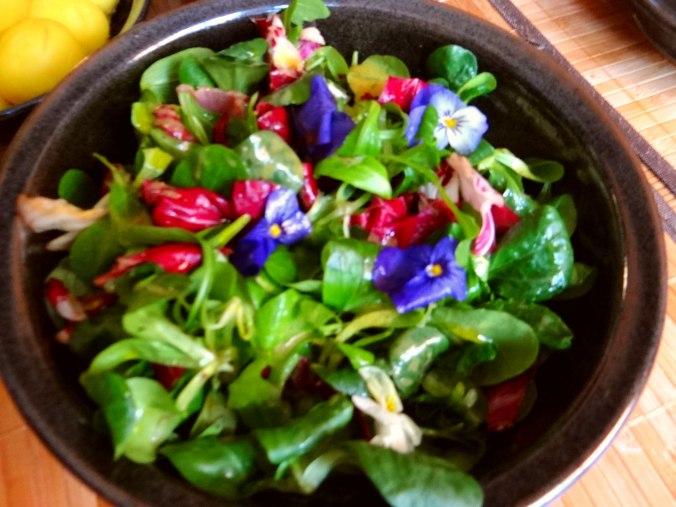 Quark und bunter Salat (8)