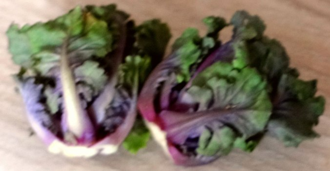 Rotbarsch,Kohlröschen,violette Kartoffeln (10)