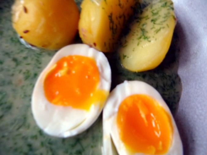 Dillsauce,Kartoffeln,Eier,Birnen (11)
